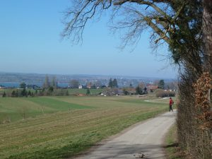 Traumwetter am Ammersee
